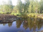 Продам земельный участок  25 соток СОТ Газовик